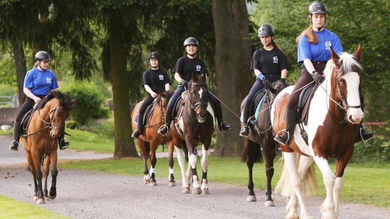 Steinmühle Pferde